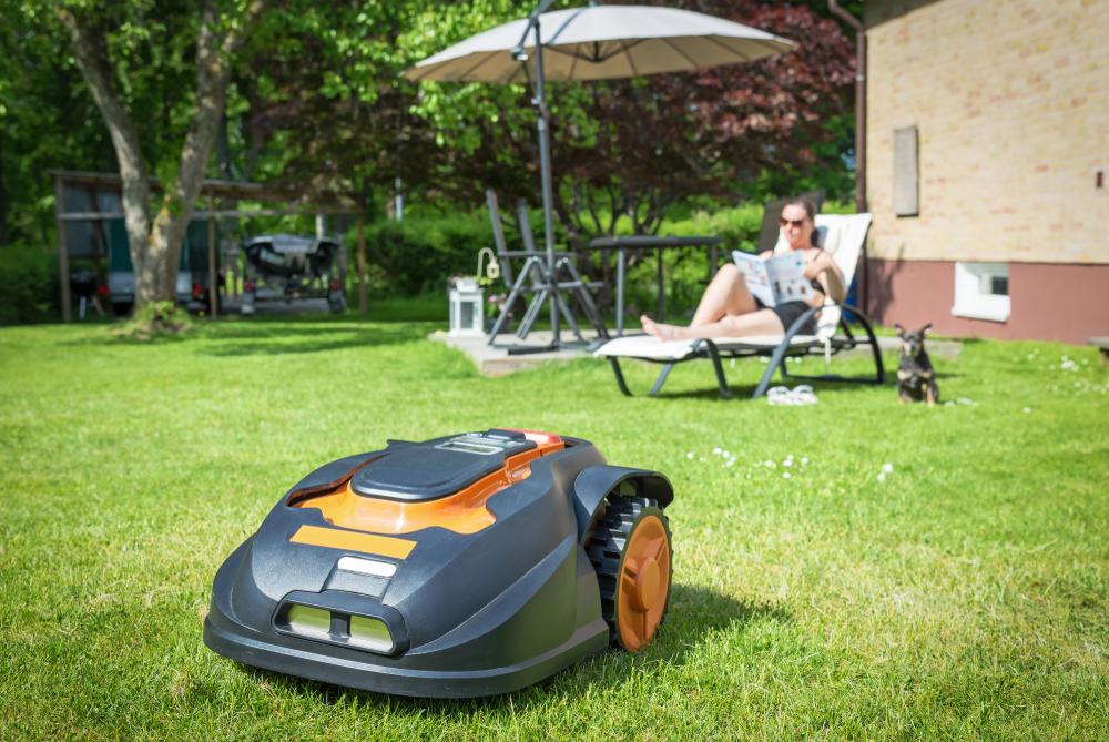 Les outils et matériels nécessaires pour entretenir un espace vert